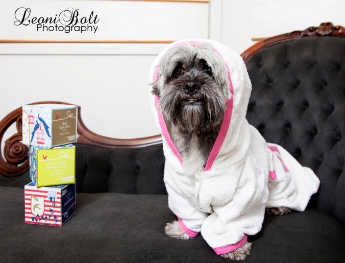 dog smiling in a bathrobe